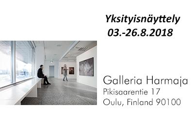 Gallery Harmaja